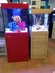 aqualife kubi