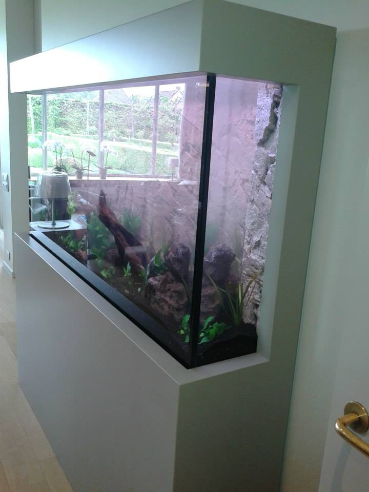 Aquarium in muur