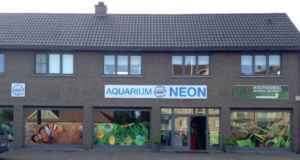 Neon Aquarium Lochristi