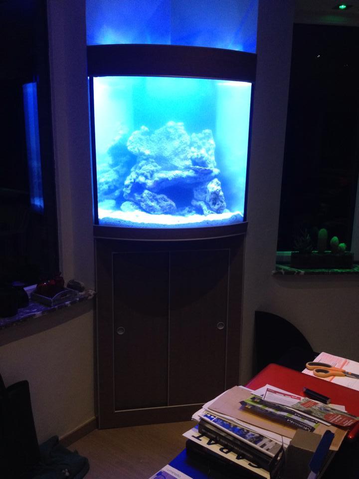 aquarium-op-maat11