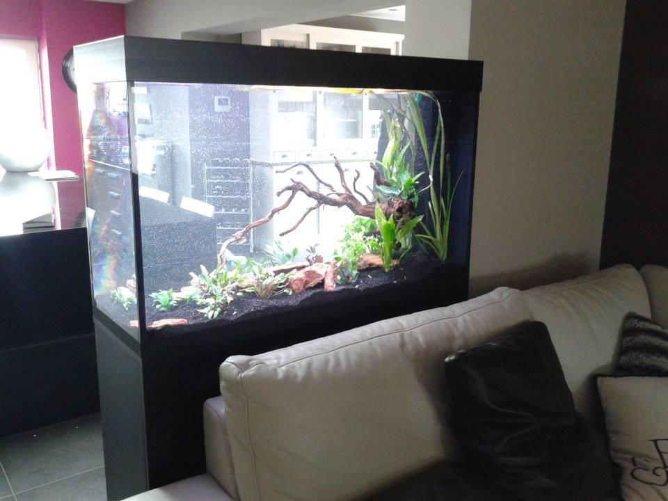 aquarium-op-maat16