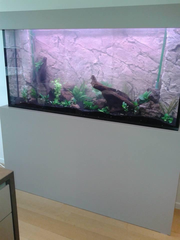 aquarium-op-maat17