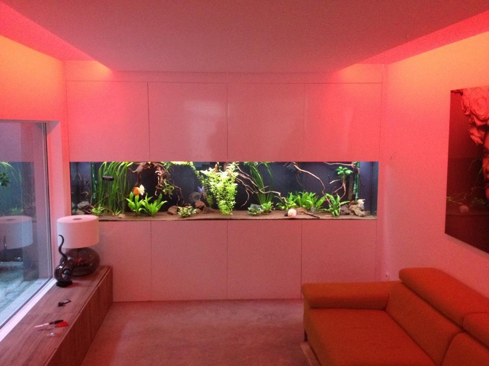 aquarium op maat