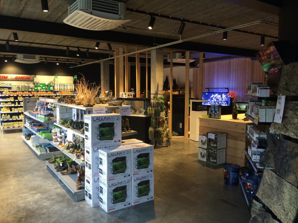 Aquarium Neon: onze winkel te lochristi