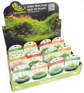 epac invitro aquarium planten