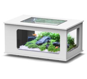 Aquatlantis aquatable aquarium