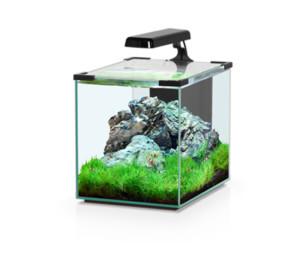Aquatlantis Nano Cubic 20