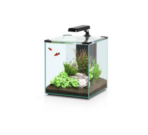 Aquatlantis Nano Cubic 30