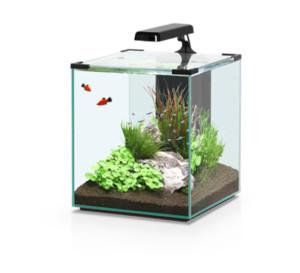 Aquatlantis Nano Cubic 40