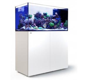 Red Sea Reefer peninsula 500 aquarium