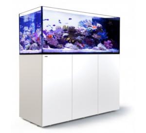 Red Sea Reefer peninsula 650 aquarium