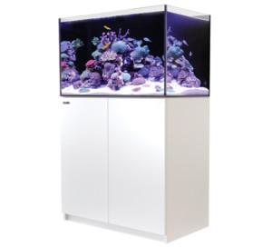 Red Sea Reefer 250 aquarium
