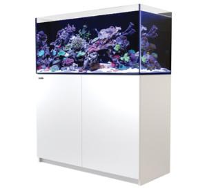 Red Sea Reefer 350 aquarium