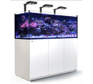 Red Sea Reefer 625 xxl