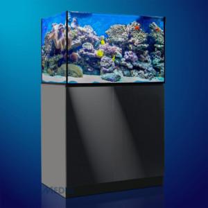 Aquarium Aquamedic Xenia 100