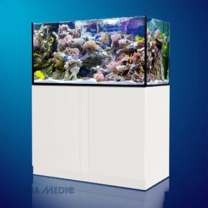 Aquarium Aquamedic Xenia 130