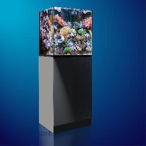 Aquarium Aquamedic Xenia 65