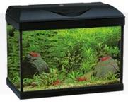 Amtra Riviera aquarium