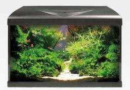 Amtra System aquarium