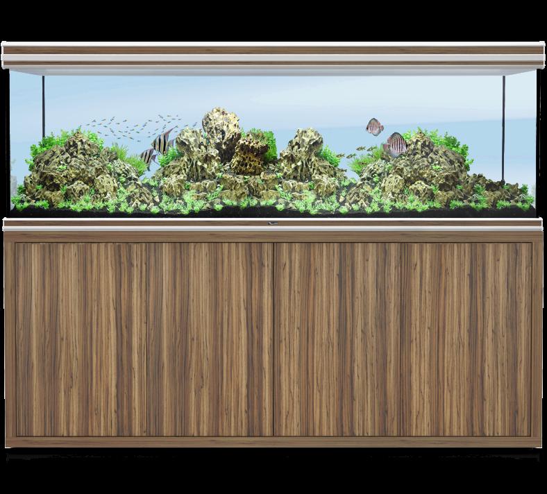 Aquatlantis Fusion Zebrano aquarium