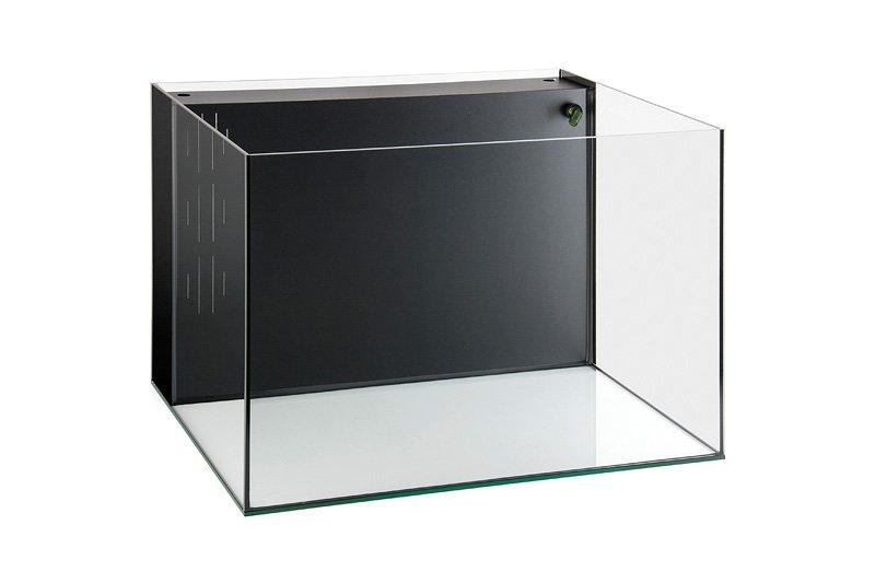 Beta aquaria